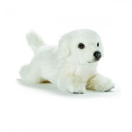 Peluche chien belle couchée 31 cm