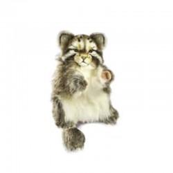 Peluche Chat Pallas Marionnette